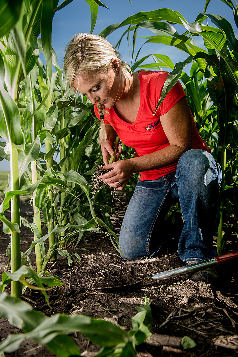 Agronomist in Cornfield Photograph