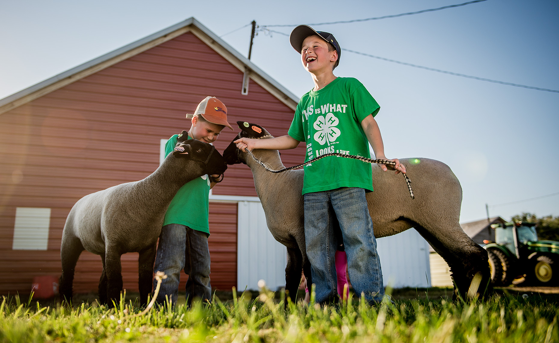 Kids with Sheep on Farm