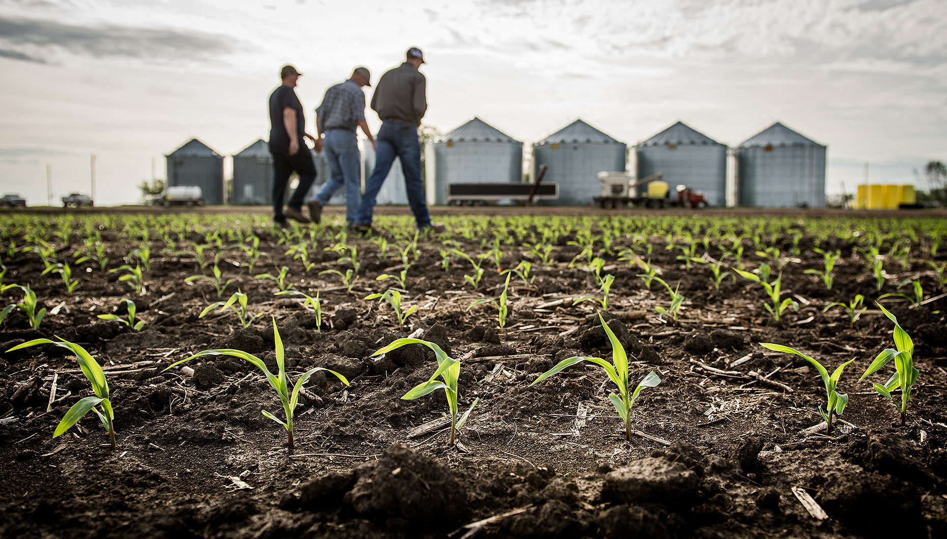 Agronomist and Farmers in Cornfield