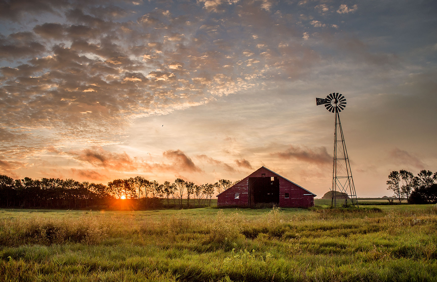 Farm Photography at Sunrise