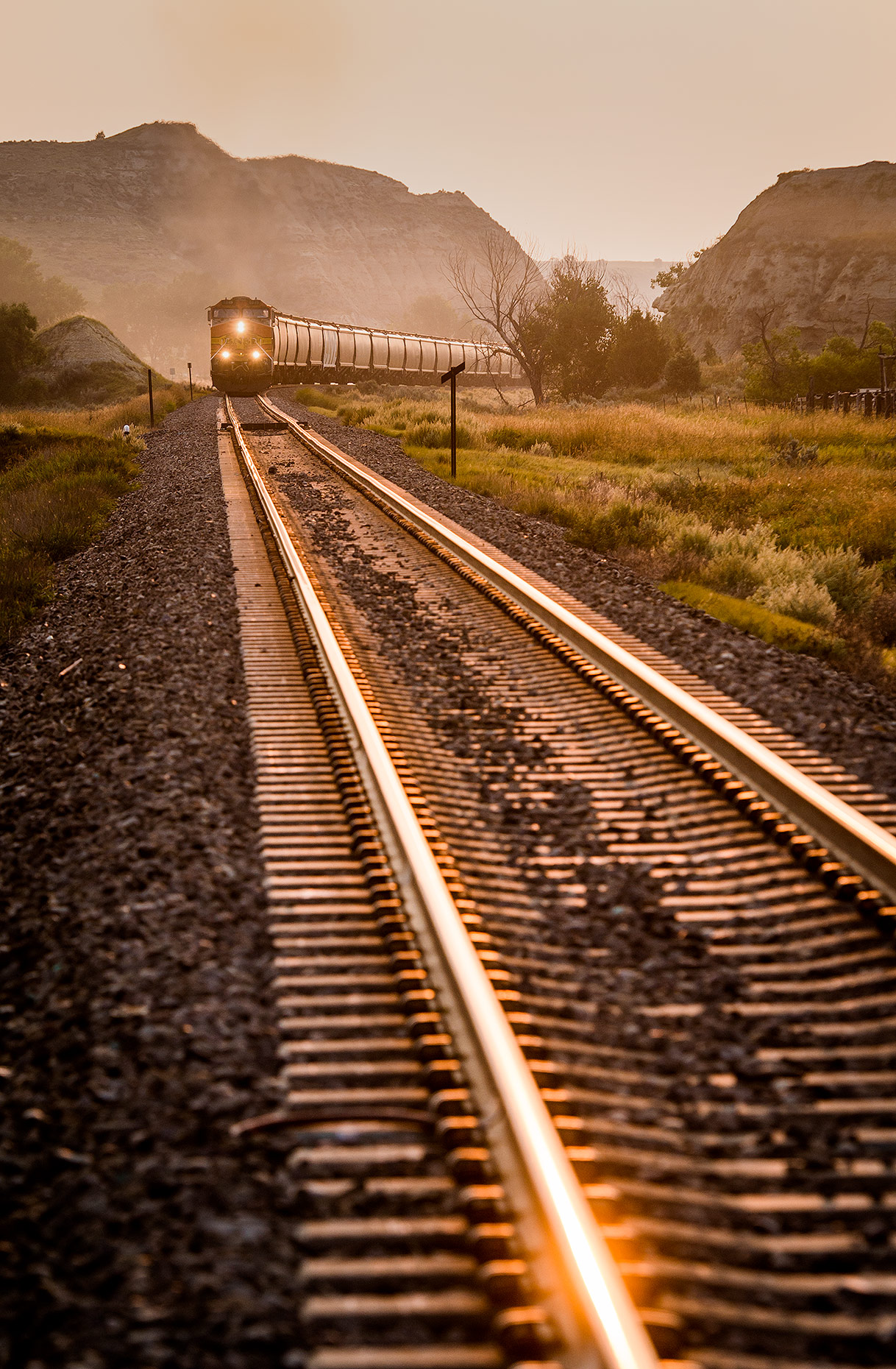 Train on Tracks at Sunrise