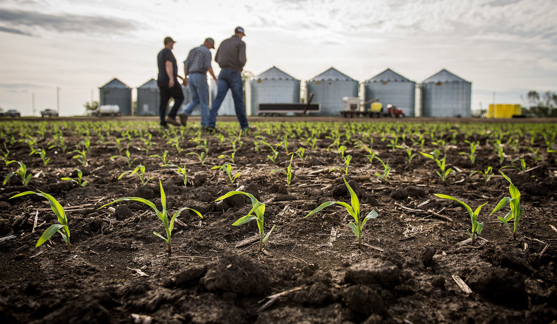Midwest Agriculture Photographer
