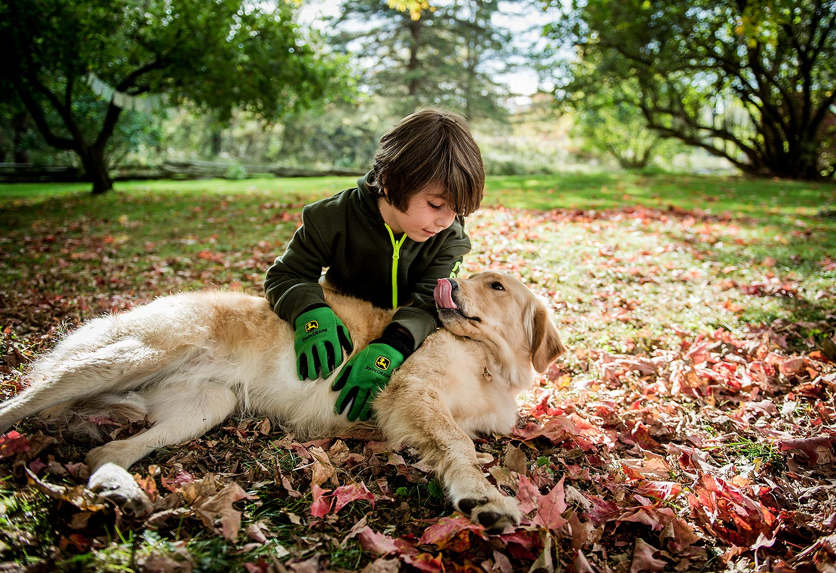 Dog and Boy in Autumn Leaves