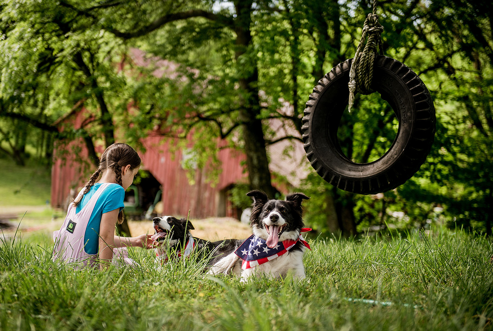 Girl with Dogs and Tire Swing