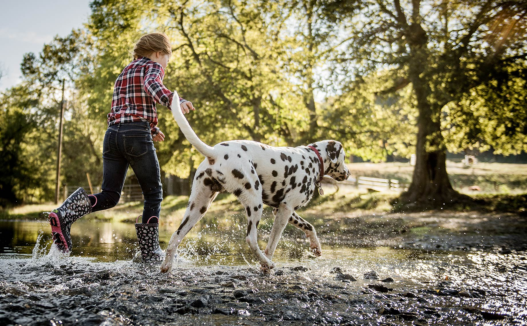 Girl with Dalmation in the Creek