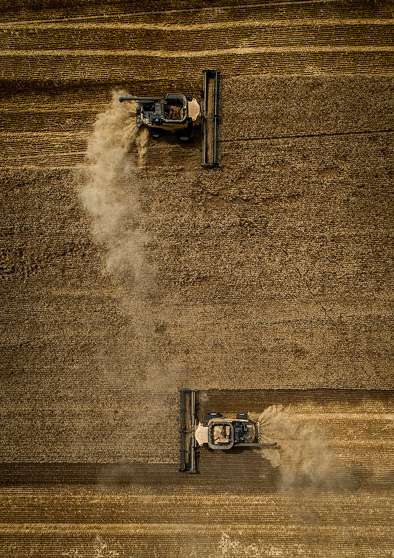 Wheat Harvest Photography