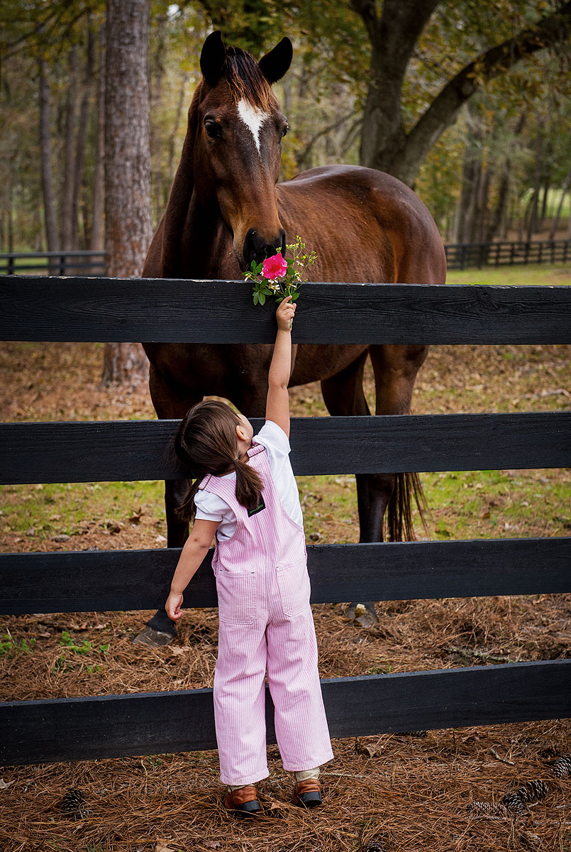 Flower Girl and Horse