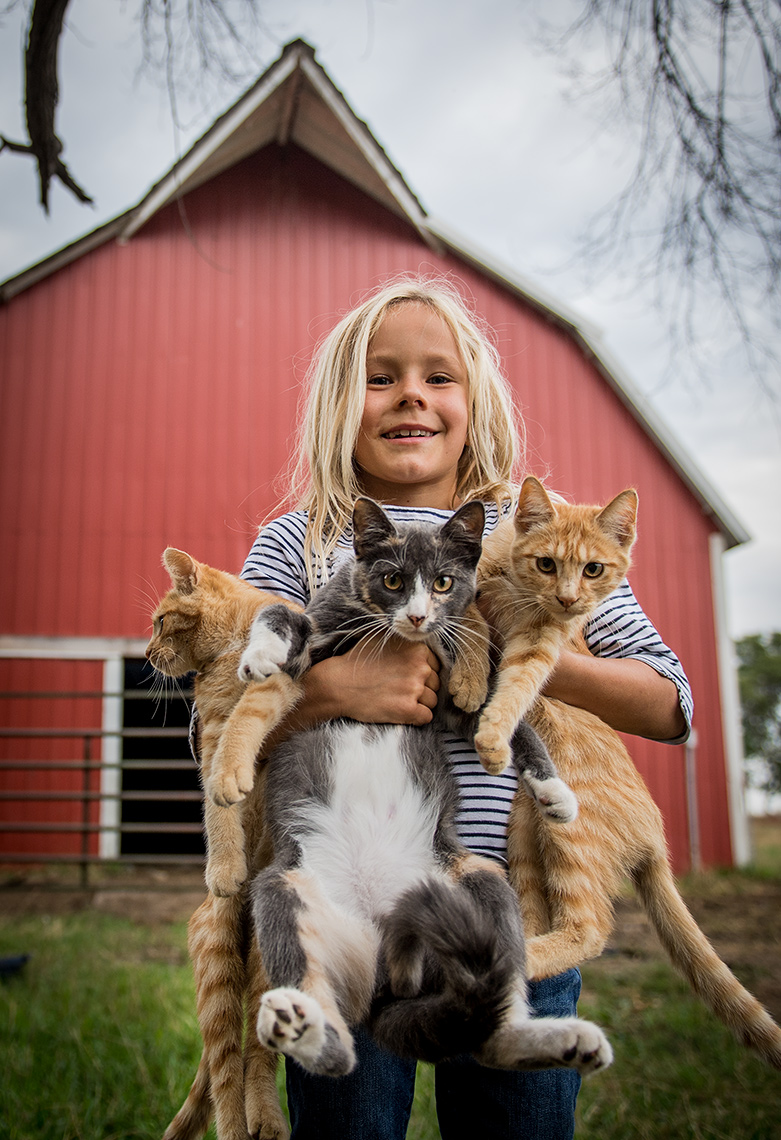 Girl with Kittens