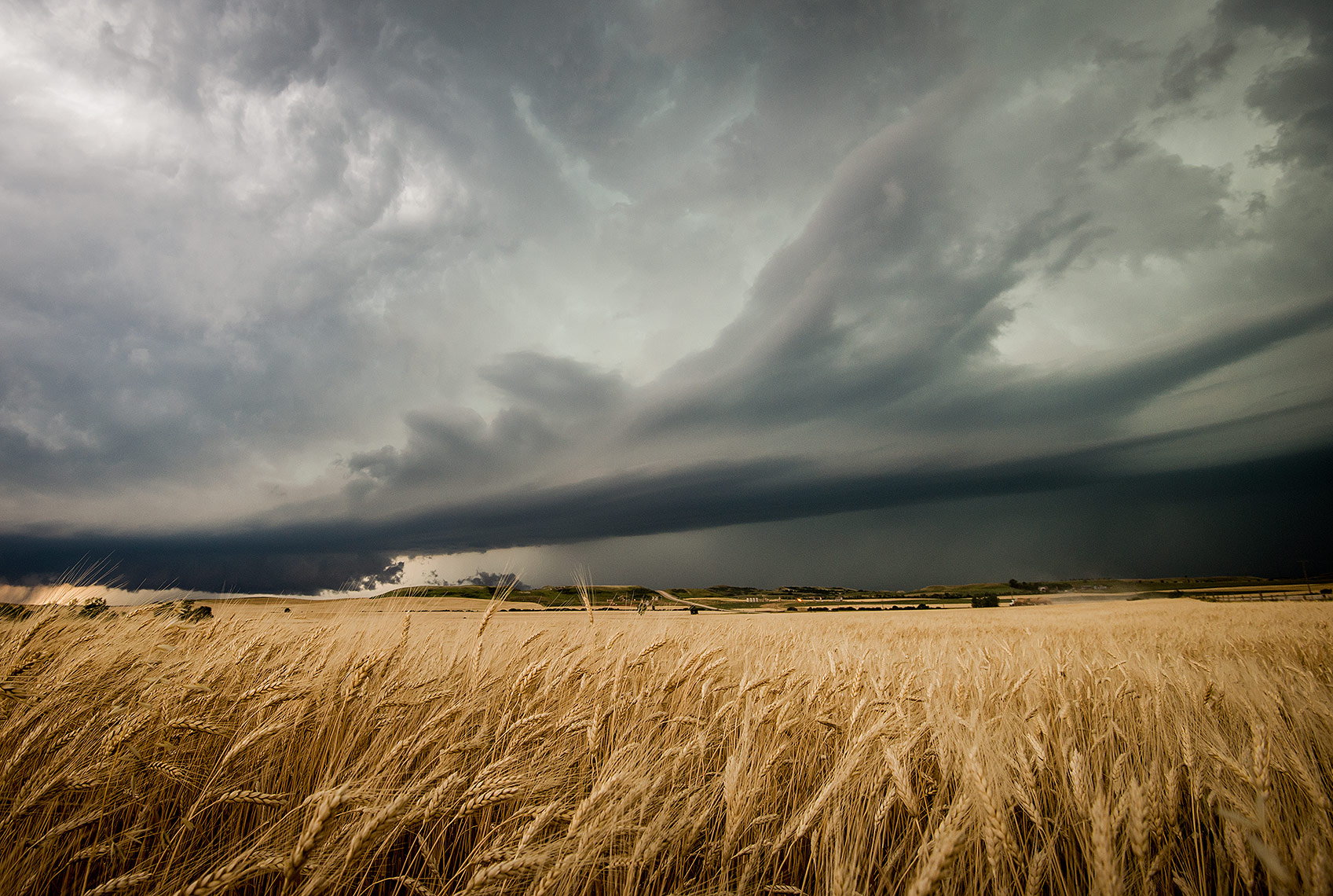 Thunderstorm and Wheat Field