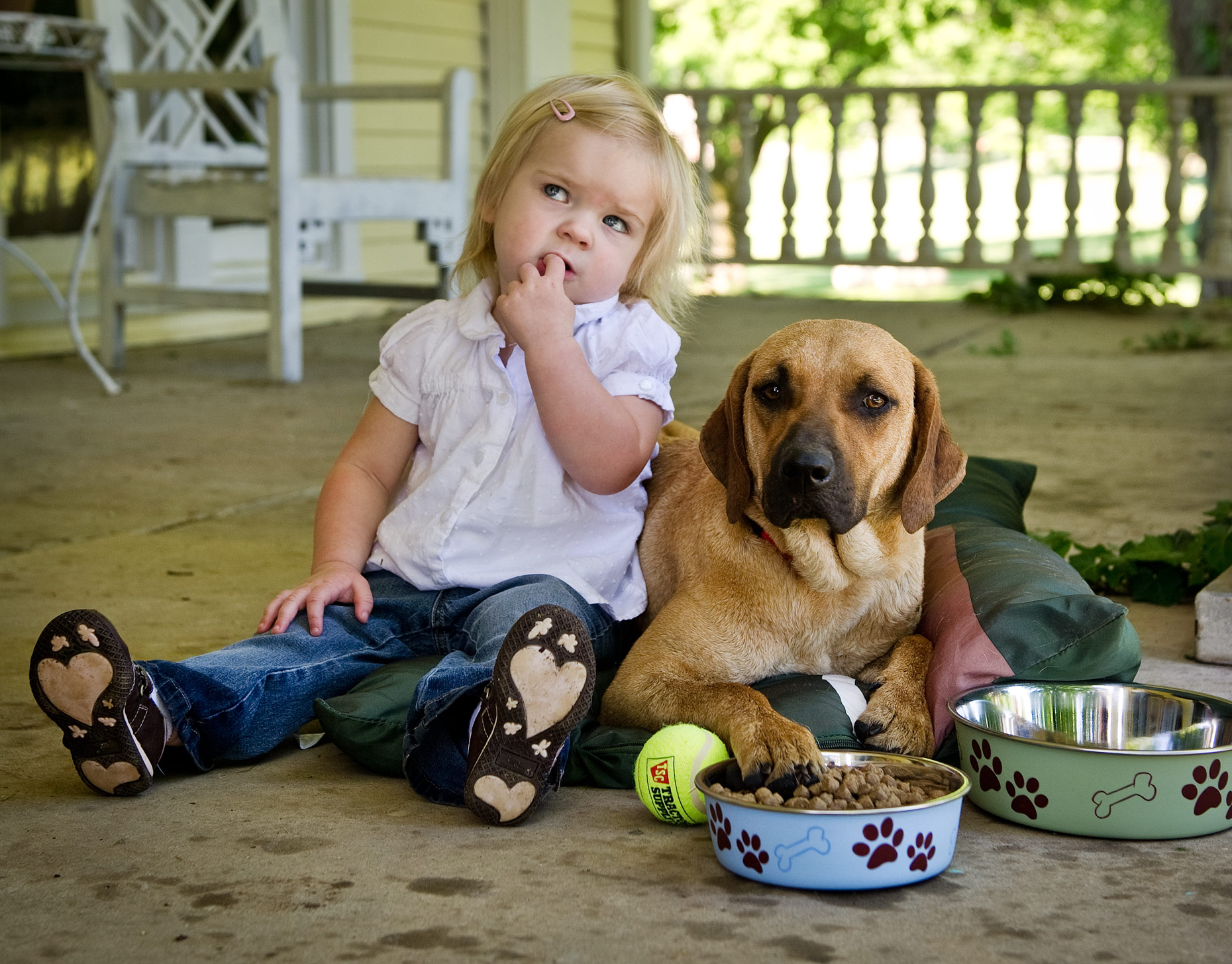 Youth and Pet Photographer