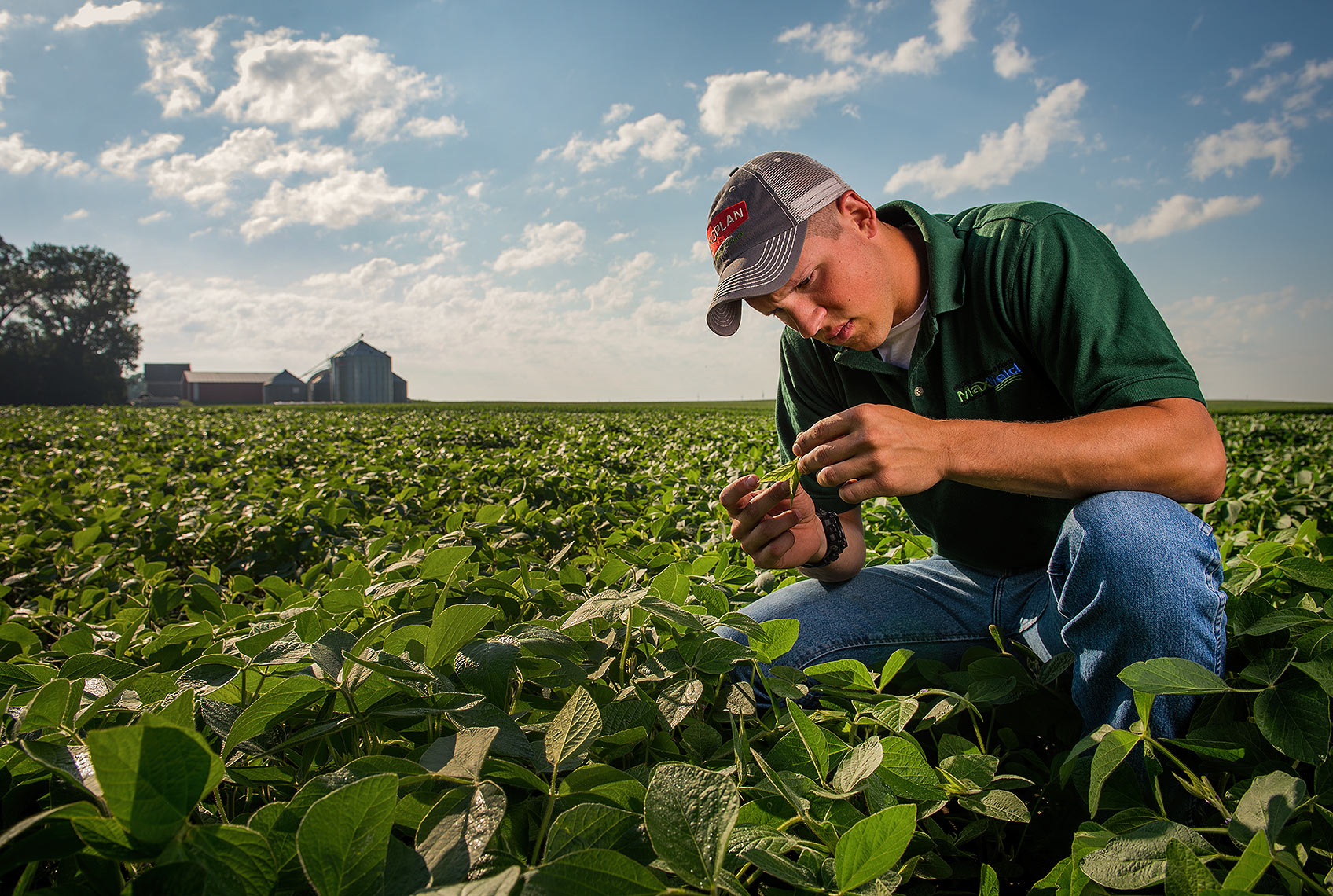 Crop Checking with Iowa Agronomist
