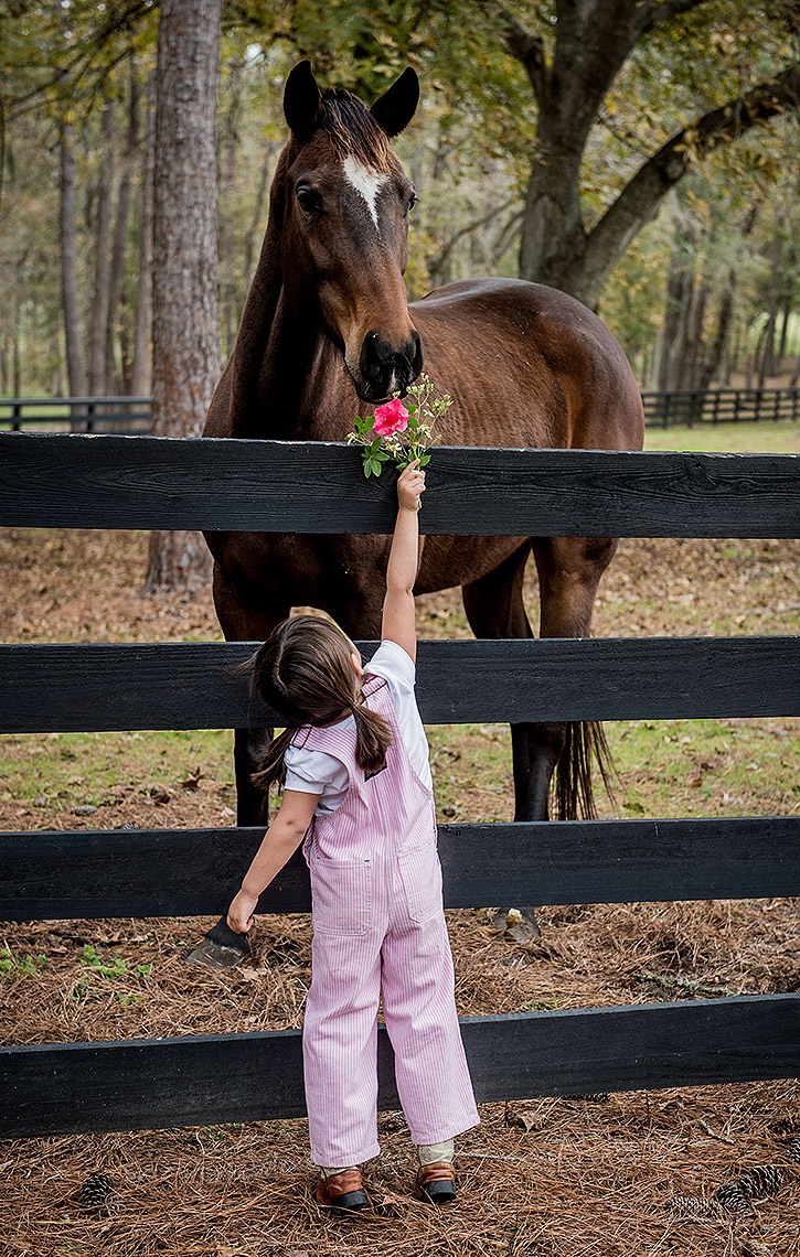 Girl with Flower and Horse
